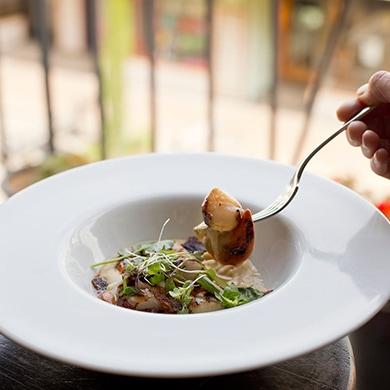 Food photography Christchurch